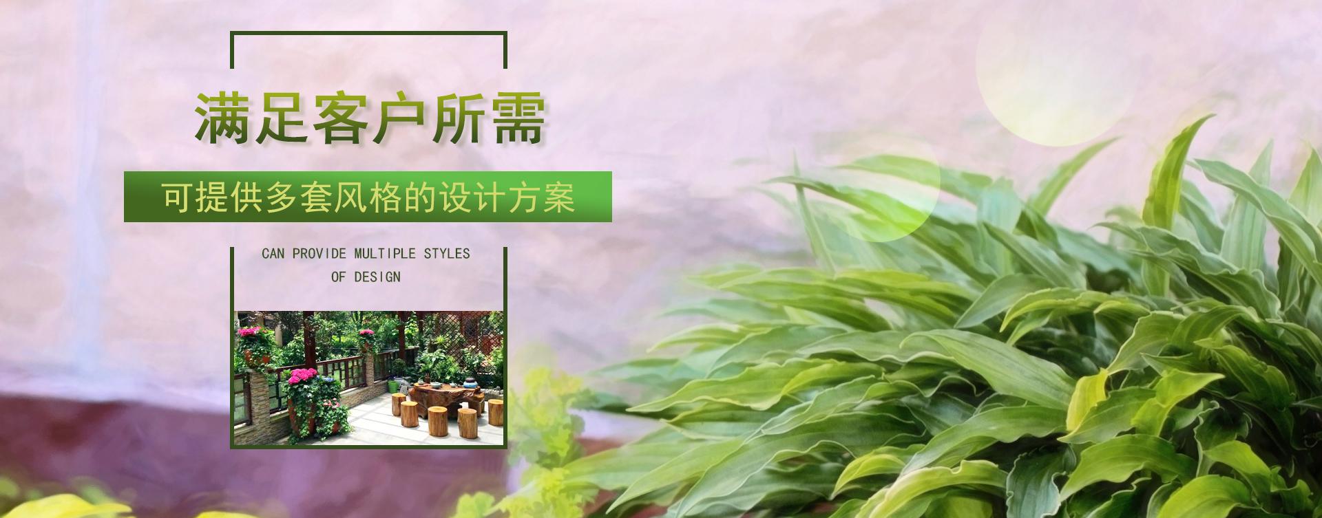 重庆植物租摆